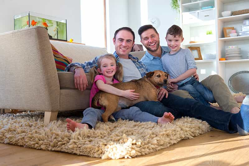 gay surrogacy is needed to start family